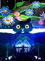 2013 Electric Daisy Carnival